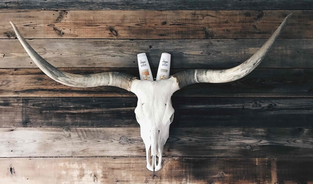 DTKAustin talks all about her new favorite DOVE shampoo. Has anyone every had a dry scalp or dandruff? Click to read why she is raving all about Dove's new Derma Care Scalp line.