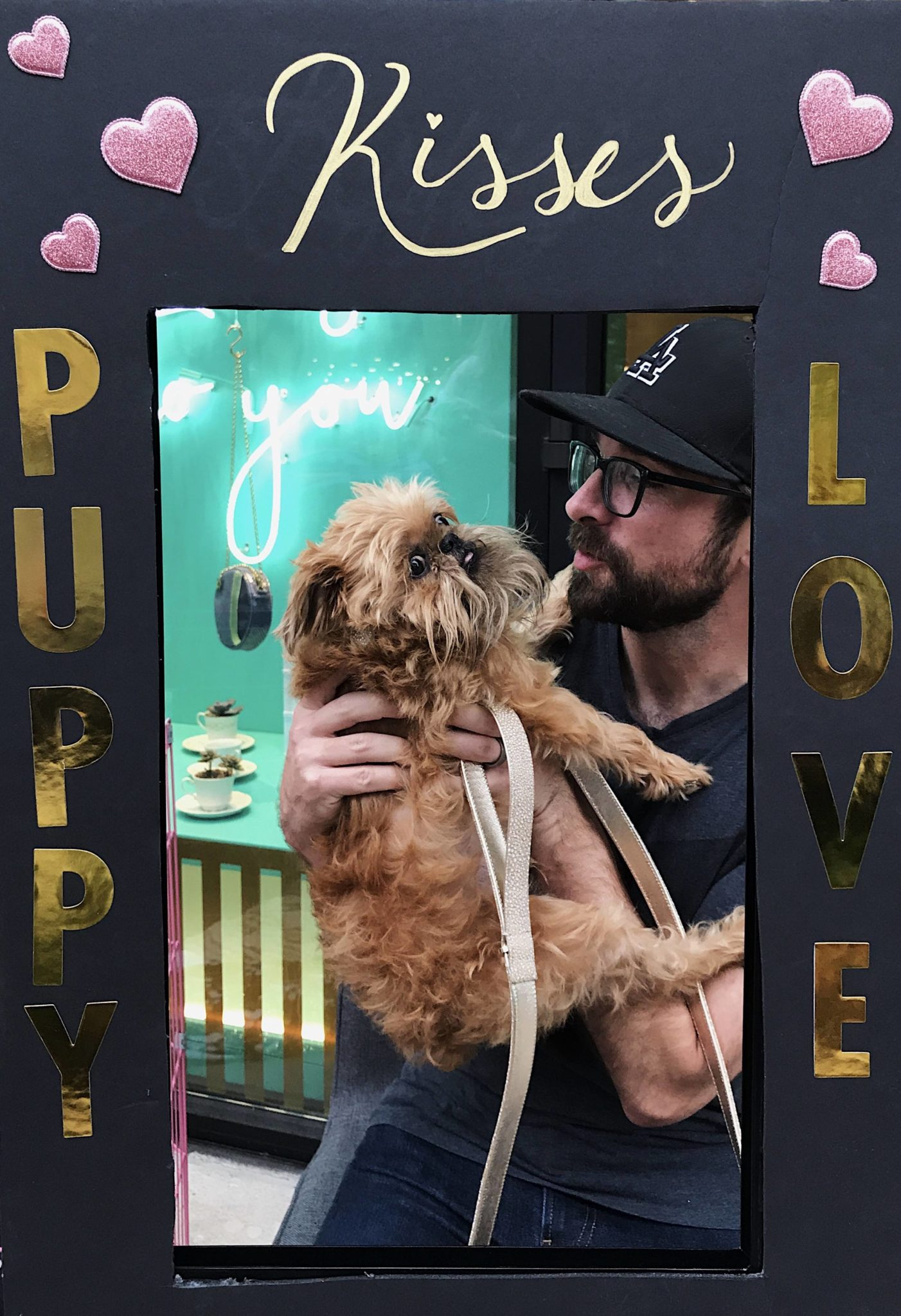 Event recap from the PAWsh Puppy Fashion Show with Kelly Wynne Handbags. Steven Jalapeño and 5 other dogs participated in the Austin Pets Alive runway way show Click for more info and pictures.