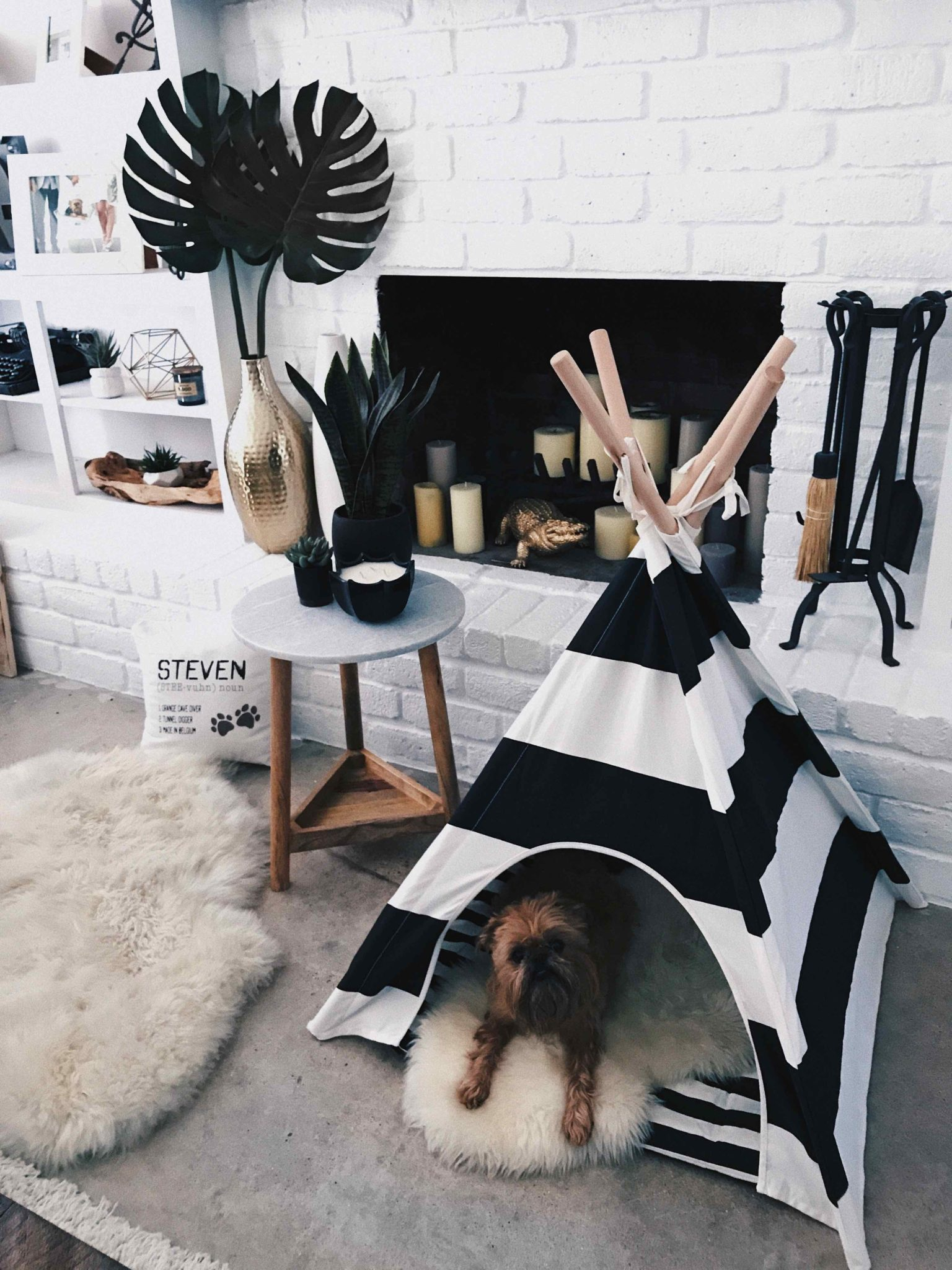 Striped dog teepee tent