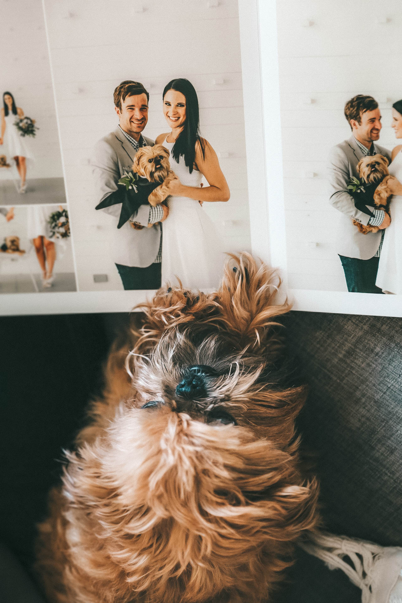 Wedding Photos | Wedding Inspiration | Custom Photo Album | Custom Memory Album | Affordable Photo Album | Online Photo Album | Nations Photo Lab | Creative Gift Ideas | The Goff's Custom Wedding Album featured by top Austin lifestyle blog Dressed to Kill