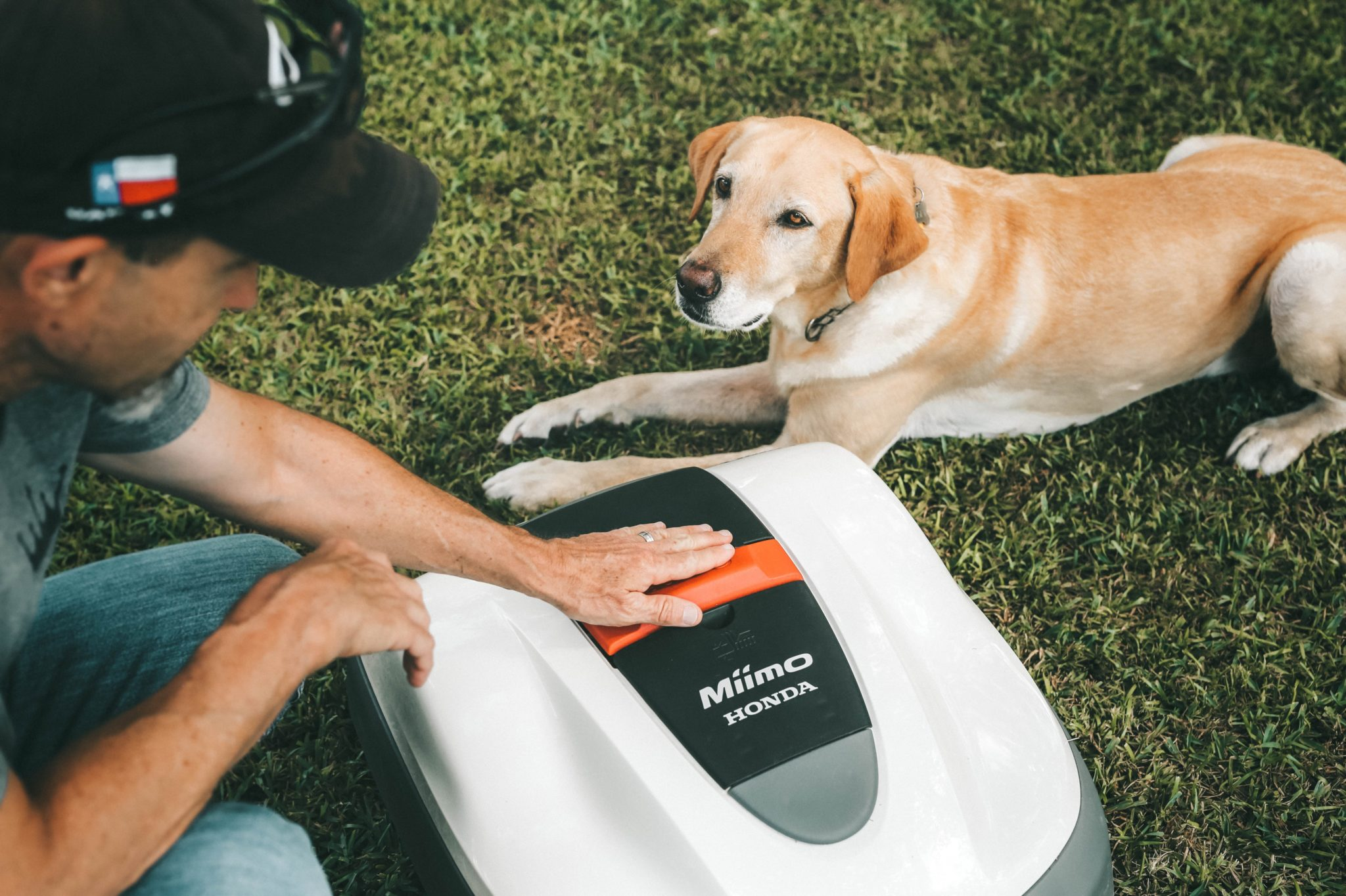 Honda Miimo Robotic Lawn Mower Review by popular Austin lifestyle blog, Dressed to Kill: image of a man and his golden lap next to the Honda Miimo Robotic Lawn Mower.