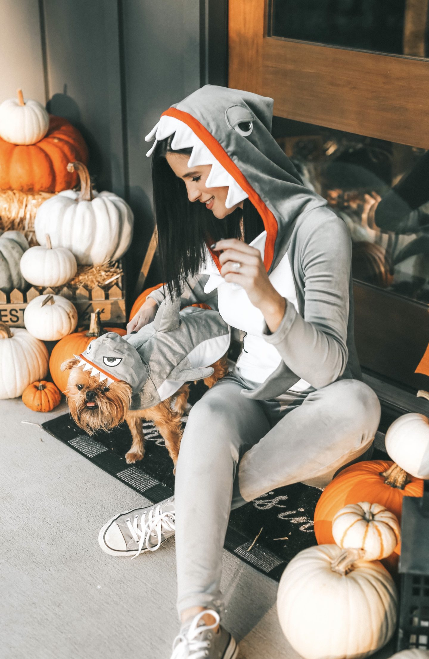 {My Favorite Matching Dog and Owner Halloween Costumes}