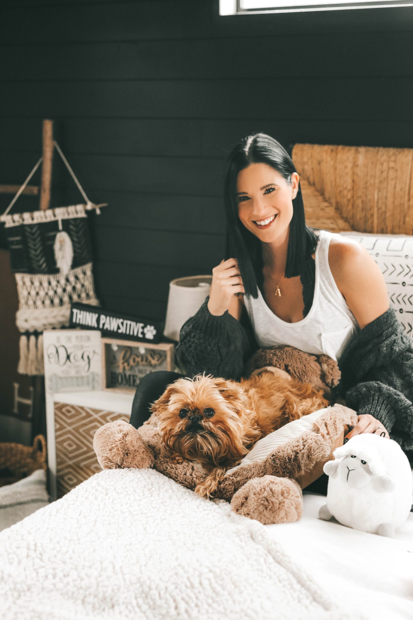 {How to Pamper Your Pet on a Budget with Tuesday Morning}