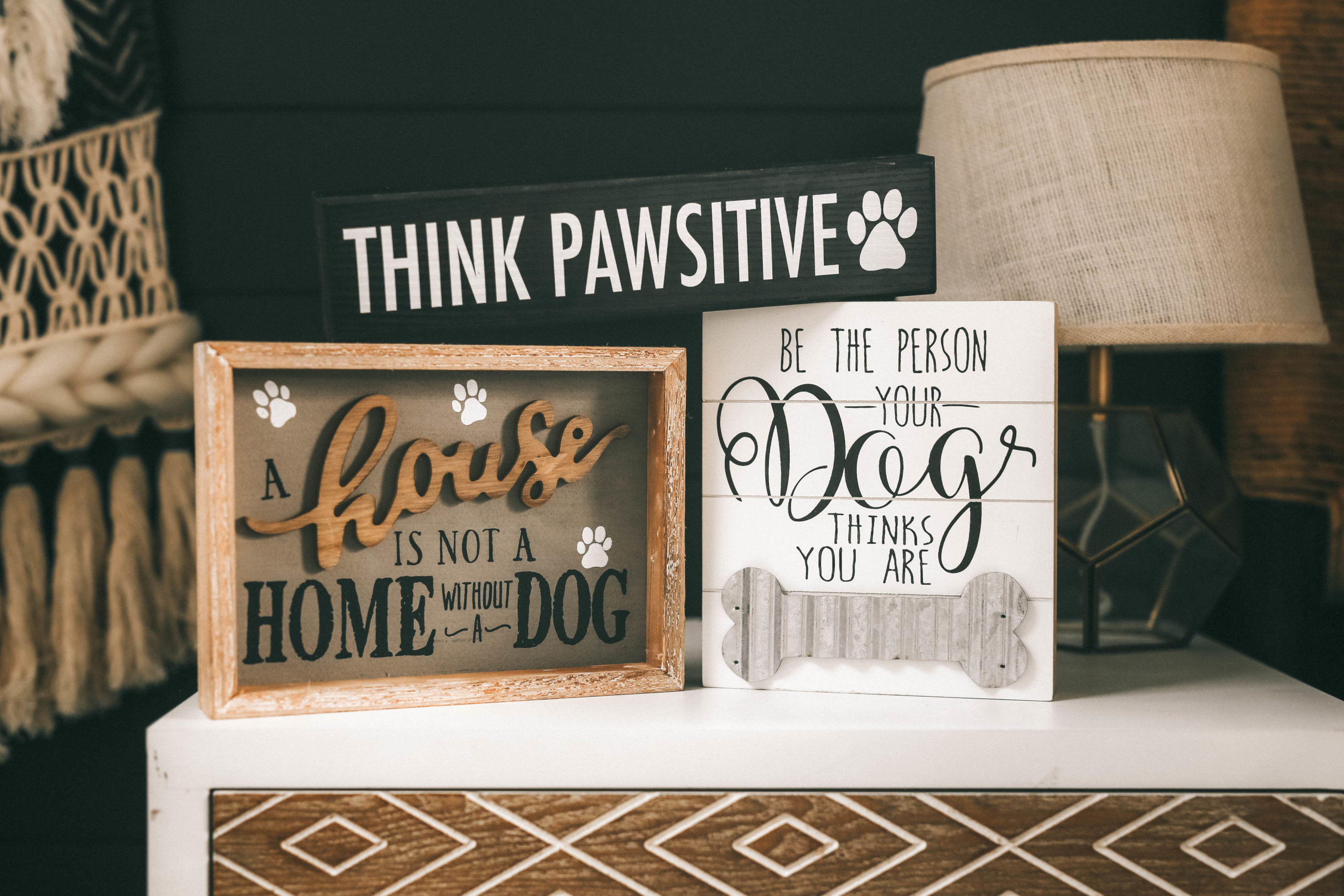 How to Pamper Your Pet by popular Nashville life and style blog, Dressed to Kill: image of various dog decor signs from Tuesday Morning.